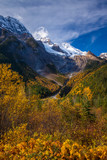 Beautiful autumn day in the Canadian Rocky Mountains in British Columbia, Canada