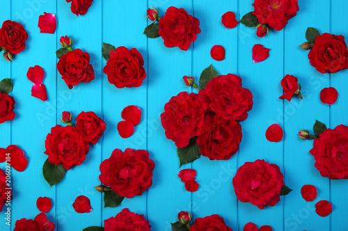 Red roses flowers on blue wood.