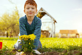 Pleasant mood. Positive cute boy looking at you while sitting in front of the planted flower