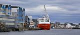 In harbor - 206119356