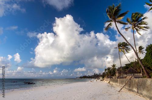 Aluminium Zanzibar Morning on the beach on the eastern coast of Zanzibar, Tanzania.