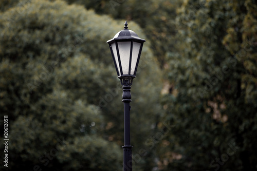 lamp post in the background of the tree