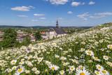 Big daisy flower on the church background