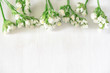 Flat-lay of beautiful white flowers on white wooden background - 206162765
