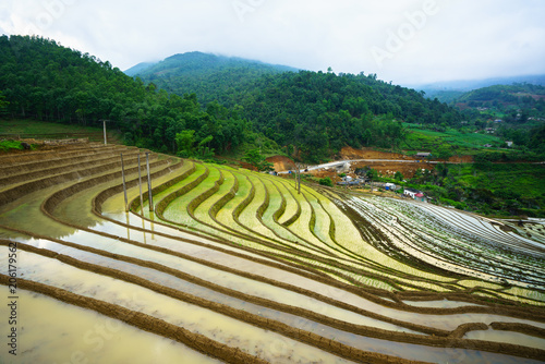 Fotobehang Rijstvelden Terraced rice field in water season, the time before starting grow rice in Y Ty, Lao Cai province, Vietnam