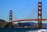 Golden Gate Bridge - 206203705