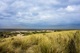 Dünen Meer Nordsee Insel Wasser Urlaub