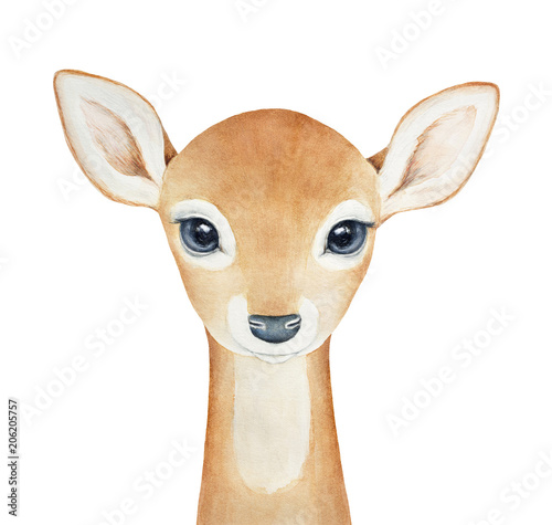 Baby Deer character. Hand drawn watercolor painting on white background, isolated. Little one, looking with big eyes. Spirit animal, symbol of love, grace, peace, humility, devotion, christmas. - 206205757