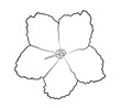 Vector illustration, isolated violet flower in black and white colors, outline hand painted drawing