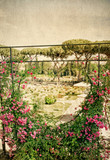 Rome's municipal rose garden with vintage background