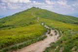 Tourist trail near mountain shelter on a Wetlina Mountain Pastures, part of Bieszczady National Park, Poland