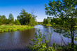 Rzeka w wiosennym słońcu