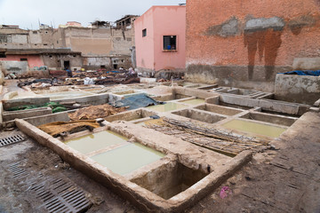 Tannery in Marrakech, Africa
