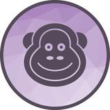 Monkey, animals, chimpanzee