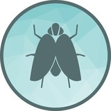 Fly II Icon