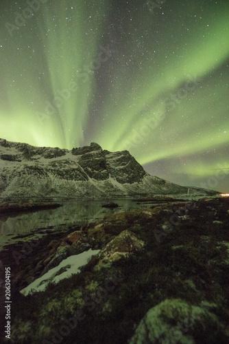 Fotobehang Olijf Northern lights
