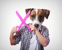 Funny Anthropomorphic Dog  Big Scissors   Sticker