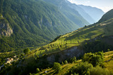 Terrace farming in the Romanche Valley in summer. Le Chazelet, Ecrins National Park, Hautes-Alpes, French Alps, France - 206317503
