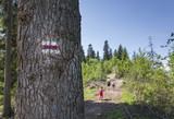 Fototapeta  - Wakacje-wycieczka w góry, czerwony szklak © anix