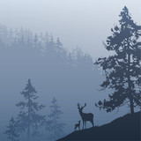 deer in the forest - 206334729