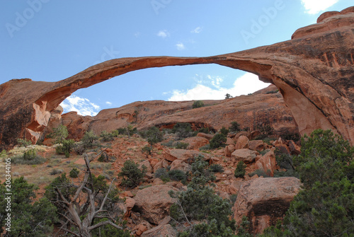 Fotobehang Cappuccino Arches National Park USA