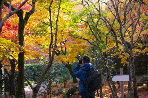 Fotobehang Kyoto Photographer is shooting maple tree during in Autumn in Japan.