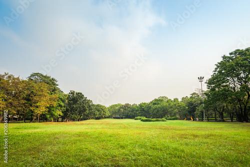 Aluminium Bangkok Green grass field with tree in Public Park