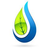 Baumblatt und Wassertropfen - tree leaf and water drop - 206386773