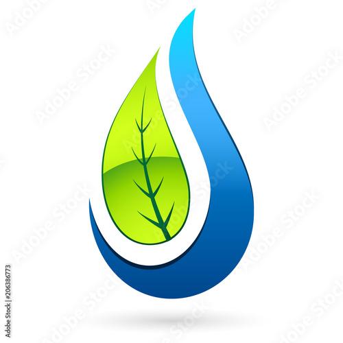 Liści drzewa i krople wody - liści drzewa i kropli wody