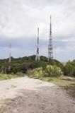 antenas de telefonia movil en bosque - 206392906