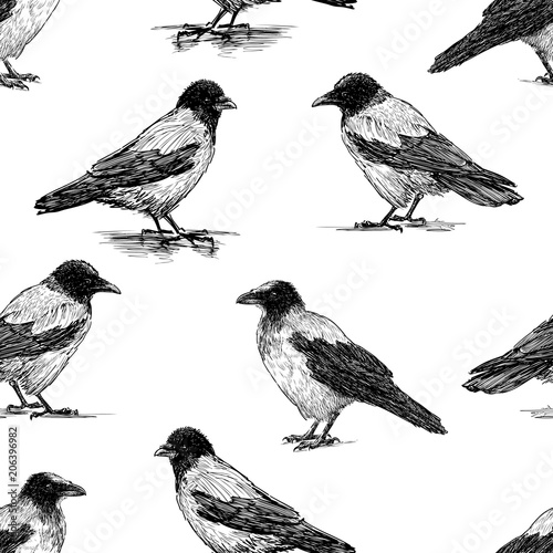 Materiał do szycia Seamless pattern of the crows sketches