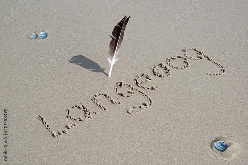Aluminium Noordzee Schriftzug Langeoog auf Sand mit Feder und Muscheln hohe Auflösung für Leinwand- oder Posterdruck geeignet!
