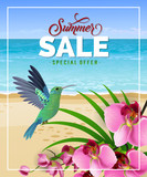 Summer sale special offer lettering with beach and hummingbird. Summer offer or sale advertising design. Handwritten and typed text, calligraphy. For brochure, invitation, poster or banner.