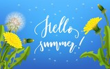 Dandelion seed background lettering. Banner with hello summer lettering. Invitation card on white with flying parachutes. Spring vector illustration
