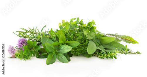 Leinwanddruck Bild Fresh garden herbs isolated on white background