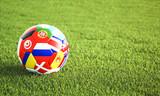 Soccer ball on green grass - 206523946