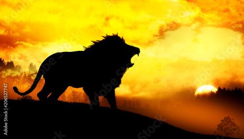 Plexiglas Geel lion in wild nature landscape