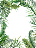 Watercolor tropical frame with exotic leaves. Hand painted floral illustration with banana, coconut and monstera branch isolated on white background for design, fabric or print. - 206533574