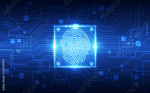 Fingerprint Integrated In A Printed Circuit Releasing Binary Codes
