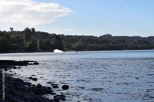 lago ranco © alvaroruiz.cl