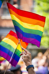 Rainbow flags flying in bright sun on the sidelines of a colorful summer gay pride parade © lazyllama