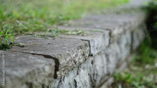 Fotobehang Olijf stone walkway in the green