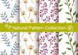 natural seamless pattern - 206664324