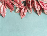 Beautiful pink leaves border on pastel blue background , top view, flat lay. Nature concept - 206671758