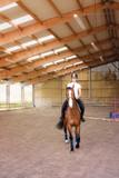 jolie cavalière au trot - 206673939