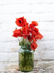 scarlet poppies in bouquet field