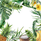 Watercolor tropical frame with exotic leaves, fruit and flowers. Hand painted floral illustration with banana and coconut palm branches, plumeria, pineapple isolated on white background for design - 206735915