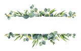 Watercolor vector green floral banner with silver dollar eucalyptus leaves and branches isolated on white background. - 206780149