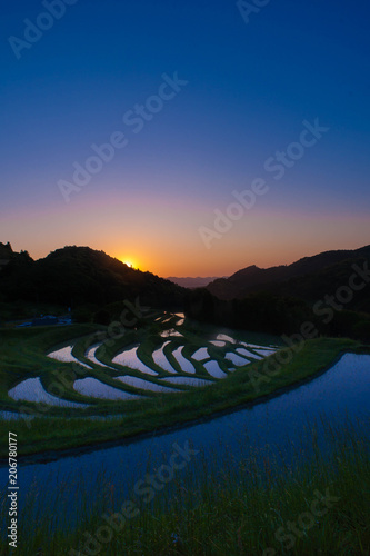Fotobehang Rijstvelden sunrise of terraced rice-fields at Oyama Senmaida Chiba Japan