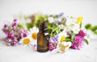 Leinwanddruck Bild - Essential oil with medicinal plants and flowers